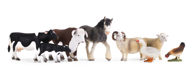 A group of farm animals isolated on a white background