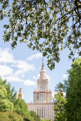 View of the Building of Moscow State University in the summer. The blossoming gardens of a lilac and an apple-tree. Soft focus