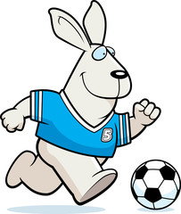 Cartoon Rabbit Soccer