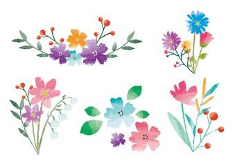 水彩の花のセット