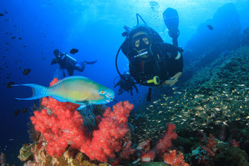 Scuba diver on coral reef with fish