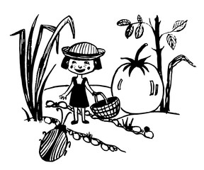 drawing of a tiny fairy girl with a basket walking in the garden with huge tomatoes along the garden path, sketch, hand-drawn comic illustration
