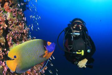 Scuba dive. Female scuba diver and Angelfish