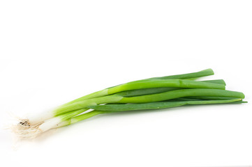 Bunch of spring onion isolated on white background