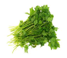 Top view of a group of parsley on a white background.