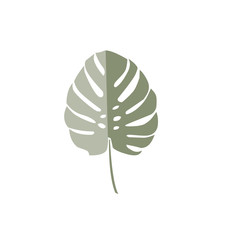 Tropical leaf. Vector green palm leaf. Silhouette of exotic plant. Botanical element isolated on white background. Summer hawaiian hand drawn vector tropical leaf. Monstera, fern, palm, hibiscus.