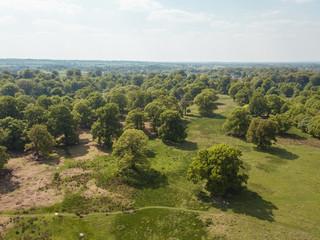Aerial Drone Field Farmer Landscape Dunham Massey Trees