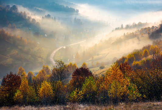 road through the village in foggy valley. gorgeous autumn scenery in Carpathian mountains. beautiful nature background