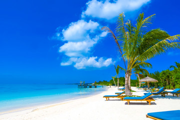 Luxury tropical vacation