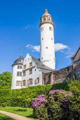 Castle Museum in Frankfurt Hoechst