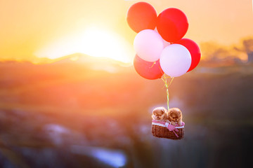 Lovely puppies fly in a hot air balloon.