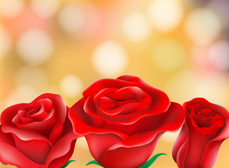 Red Beautiful Roses Blur Background
