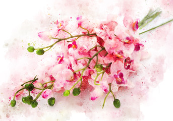 Watercolor peach flower spring