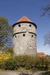 Tallinn - Muraille