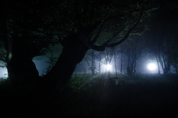 Night fog in the village. Mysterious. Moonlight. Lighting up Swing near the tree in the yard. The light from the backside of trees. Mystic night ountryside. Light in the fog.