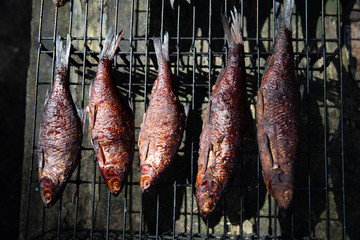 smoked fish cooked in a small smoker
