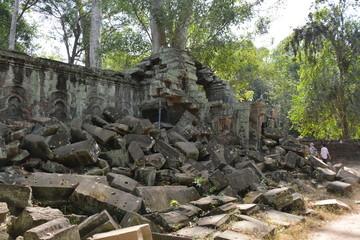 カンボジアのアンコール遺跡群~タ・プローム