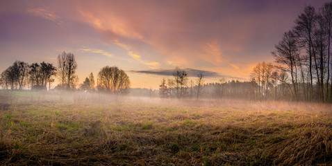 Meadow in the Lublin region. Picture taken in the spring at sunrise on a misty meadow in one of the villages in the Lublin region.
