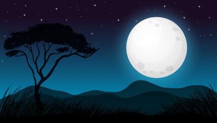 Savanna Forest in Dark Night