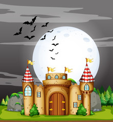A Full Moon Night and Castle