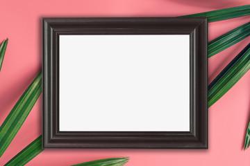 wood frame and green leaf on pink pastel color background. tropical background.