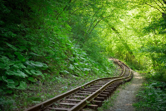 old narrow-gauge railway in the forest in summer overgrown with plants and grass in the Guam gorge of Adygea, the Caucasus
