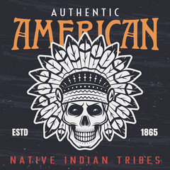 American native indian chief skull illustration