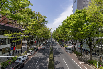 Beautiful view of Omotesando street from an overpass, Tokyo Japan