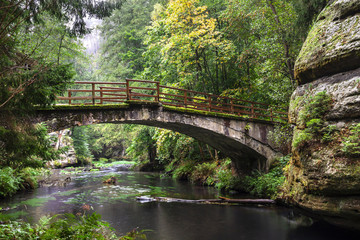 Old bridge in the forest at the rocks