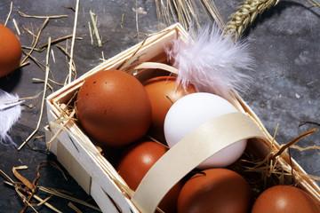 Egg. Fresh farm eggs on a wooden rustic background
