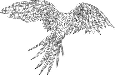 Beautiful coloring book page with parrot on white background