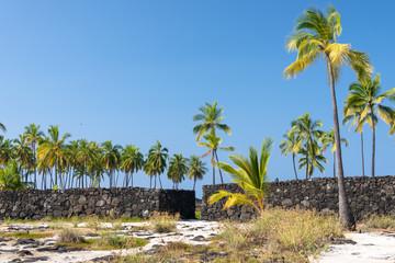Photo sur Toile Ile Pu'uhonua o Hōnaunau, wall and coconut palms