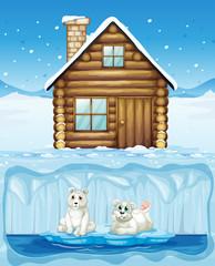 Polar Bear and Northern Hut