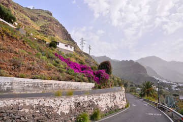 European natural countryside in Agaete Gran canaria