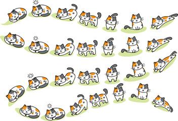 cats cartoon background
