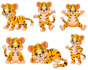 Happy tiger cartoon set collection