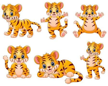 Happy tiger cartoon set collection