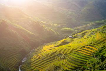 Vietnam Mu Cang Chai Beautiful rice field on terrace the mountains