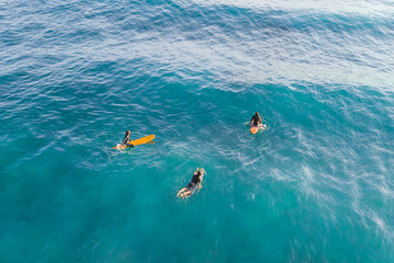Three Surfers in the ocean, top view