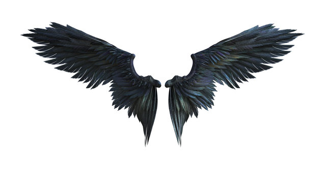 3d Illustration Demon Wings, Black Wing Plumage Isolated on White Background with Clipping Path.