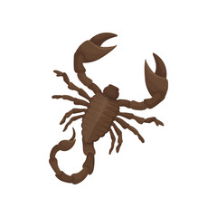 Detailed flat vector icon of Egyptian scorpion. Creature with eight legs, pair of claws and narrow tail with venomous stinger