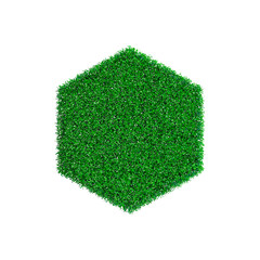 Patch of grass in form of hexagon. Vector illustration.