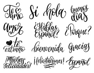 Translated from Spanish handwritten phrases Welcome,Thank You, Yes etc. Vector calligraphy set on white background.