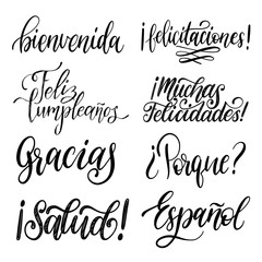 Translated from Spanish handwritten phrases Welcome,Thank You, Why etc. Vector calligraphy set on white background.