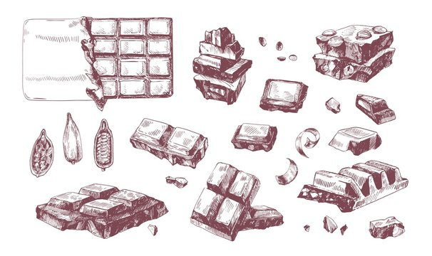 Collection of elegant drawings of whole and broken into pieces chocolate bars and cocoa beans. Delicious dessert hand drawn on white background. Vector illustration in antique engraving style.