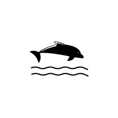 dolphin icon. Element of beach holidays icon for mobile concept and web apps. Isolated dolphin icon can be used for web and mobile. Premium icon