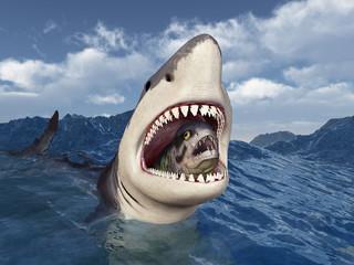 Weißer Hai mit Beute im Maul in stürmischer See