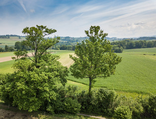 Aerial view of forest in rural landscape in Switzerland on a warm summer day
