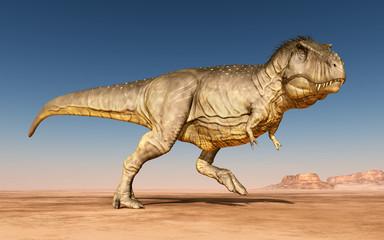 Tyrannosaurus Rex in der Wüste