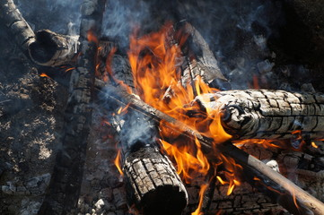 burning logs and smoke on the ground